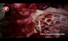 گشت و گذار عیدانه در محبوب ترین بازار شمال تهران؛ از عمه لیلا و چلوکباب تا شیر مرغ و جون آدمیزاد در بازار غُلغُله ی تجریش