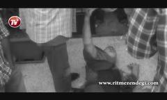 بی پرده و متفاوت با کارگردان «آذر، شهدخت، پرویز و دیگران»