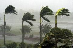 وزش باد و طوفان شدید در سیستان؛ 884 نفر به مراکز درمانی انتقال یافتند