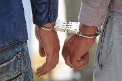 دستگیری ۱۰۶سارق حرفهای