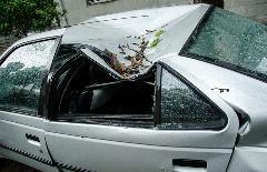 گزارش تصویری از خسارات توفان در ساری