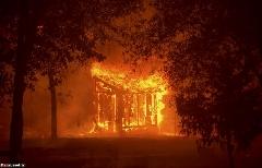 گزارش تصویری آتش سوزی مهیب در کالیفرنیا