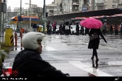 گزارش تصویری از بارش باران در تهران