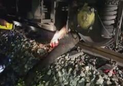 برخورد فیل با قطار مسافربری در هند