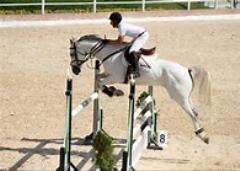 نمایش بی نظیر با اسب های اسپانیایی