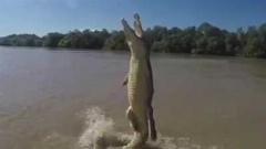 پرواز تماشایی یک تمساح/فوق العادست