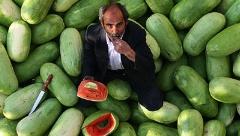 شب چله به جای هندوانه کیلویی 4500 تومان، پیاز بخوریم!/جواد ظریف از پس عادل فردوسی پور برمی آید؟/آمپاس تقدیم می کند