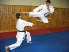 مسابقه کاراته ای که در 3 ثانیه به پایان رسید/ببین چطوری زدش....