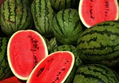 بازار سیاه قیمت هندوانه در آستانه  رسیدن شب یلدا