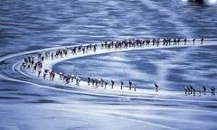 راه رفتن روی دریاچه یخ؛ لذتی که می توانید با چند ساعت رانندگی تجربه اش کنید/ قسمت  سوم از سفرنامه پنج ماجراجوی ایرانی به ارمنستان