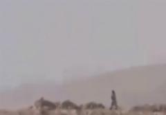 کشته شدن داعشی از فاصله 20 متری