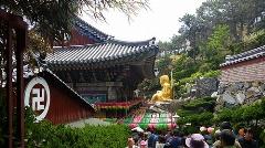 وقتی خبرنگار تی وی پلاس مجبور می شود غذای بی مزه و بدون طعم اما سالم  را در معبدی در کره تا انتها بخورد/بزرگترین مجسمه بودا در جهان/ اختصاصی تی وی پلاس