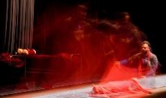 نقشی که شهرام حقیقت دوست حسرت بازی کردن آن را داشت و آلمانی ها اجرا کردند؛ خاک صحنه از تالار وحدت گزارش می دهد