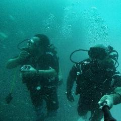 اینجا ایران است! غواصی با لاک پشت ها میان کشتی های غرق شده و مرجان های شگفت انگیز