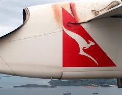 یک اتفاق عجیب/مار شناور در بال هواپیما