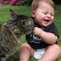 بچه بامزه و ناناز که یک گربه ملوس در آغوش کودک جا خوش کرده