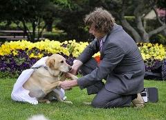 زوج خوشبخت؛ پسر استرالیایی با سگش ازدواج کرد!!