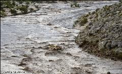 حرکت ستودنی مردم برای نجات مادر و کودک از آب سرد رودخانه