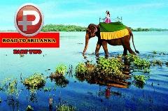 از جدال با مار کبری تا فیل سواری؛ قسمت دوم سفرنامه تی وی پلاس به بهشت گمشده - سریلانکا