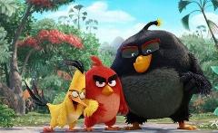 پرندگان خشمگین این بار، خشمگین تر پا به پرده ی نقره ای سینما خواهند گذاشت؛ تریلری زیبا از پرندگان خشمگین