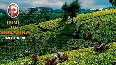از میمون های دزد تا قدم زدن در مزارع چای در بهشت گمشده؛  قسمت سوم سفرنامه تی وی پلاس به بهشت گمشده - سریلانکا