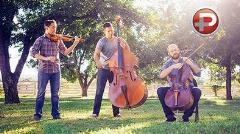 اجرای متفاوت موزیک برادران آویچی توسط این سه موزیسین خلاق و حرفه ای
