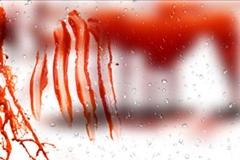 قتل دردناک دختر جوان در اتاق خواب پسری که قرار بود همسرش شود