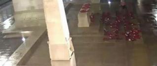 اقدام غیراخلاقی دختر و پسر روی قبر سربازان گمنام