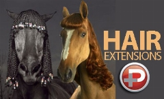 پشت پرده کلاهبرداری های آرایشگاه های زنانه: خانم ها! مراقب باشید موی اسب به شما ندهند!