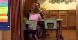 برخورد غیرانسانی مربی مهدکودک با دختر 4 ساله/ پلیس نبراسکا از بازداشت یک مربی مهدکودک به اتهام آزار جسمی یک دختر 4 ساله خبر داد.