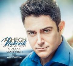 """موزیک محمدرضا گلزار به نام """"عاشق نبودی"""" را از تی وی پلاس بشنوید و دانلود کنید"""