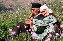 فکر می کنید چند سال زنده بمانید؟/ سن امید به زندگی در ایران اعلام شد