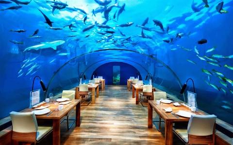 رستورانی دیدنی در زیر دریا، مالدیو