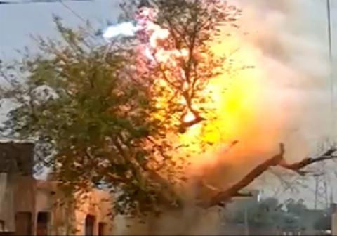 عبور جریان الکتریکی از یک درخت باعث آتش گرفتن آن شد.