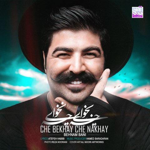 جدیدترین آهنگ بهنام بانی ستاره جدید موسیقی ایران منتشر شد/چه بخوای، چه نخوای را از تی وی پلاس بشنوید و دانلود کنید
