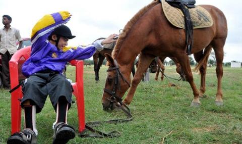 اسب هایی که پزشک معالج شما هستند/درمان افسردگی، محدودیت های حرکتی، اوتیسم و بیماری های جسمی با پدیده ای به نام اسب درمانی/اختصاصی تی وی پلاس