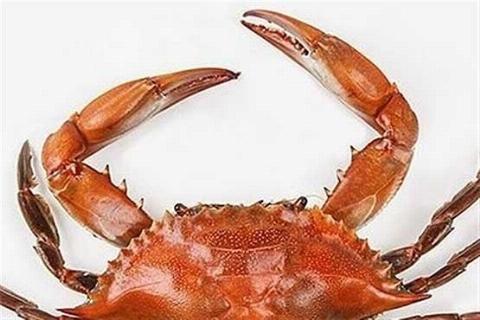 فیلم: اقدام باورنکردنی یک خرچنگ زده حین سرخ شدن در ماهیتابه سرآشپز!
