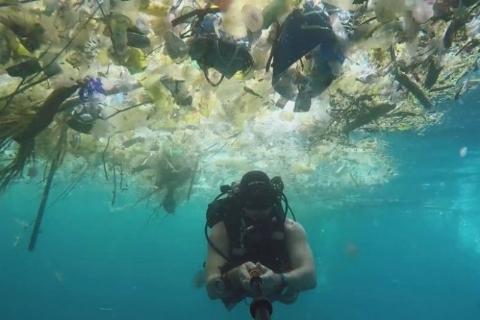 ویدئوی تکاندهنده غواص انگلیسی از دریای زباله در سواحل بالی + فیلم