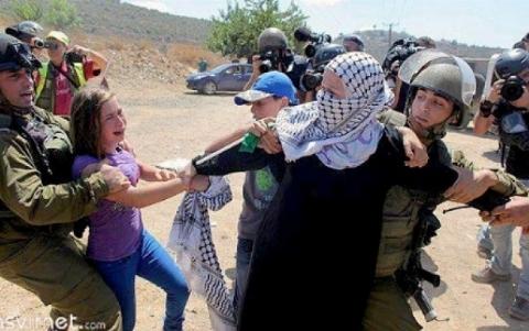جدال دردناک دختری زیبا با سربازان اسرائیلی / فیلمی که دنیا را تکان داد