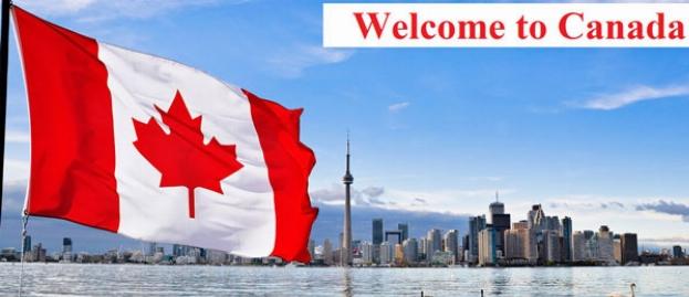 علت به دنیا آمدن بچه ستاره های سینمای ایران در کانادا مشخص شد/این معروف ترین پُل خودکشی در دنیاست/جریمه یک میلیون تومانی آشغال سیگار در سبزترین پارک جهان/آشنایی با ونکوور کانادا در سفرنامه اختصاصی تی وی پلاس