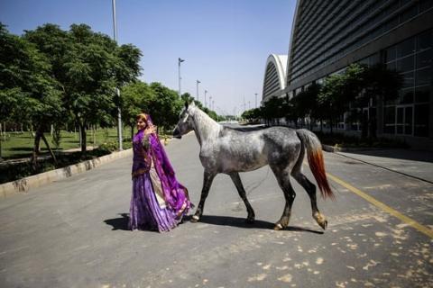 گزارش مفصل و جذاب از مراسم اختتامیه اولین نمایشگاه بین المللی صنعت اسب، حیوانات همزیست و فرآورده ها در ایران
