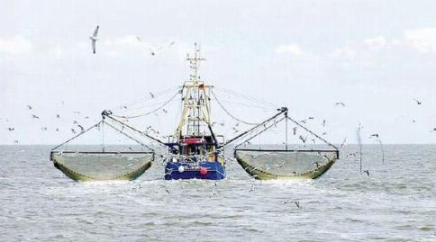 فرار کارگران کشتی چینی ماهی دزد به محض دیدن فرماندار جاسک!